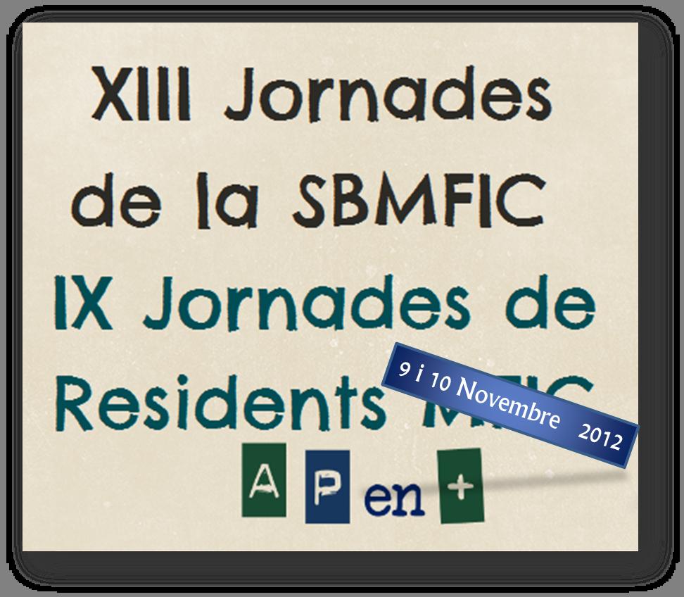 Resum del Taller de l'Immigrant en les XIII Jornades de la SBMFIC